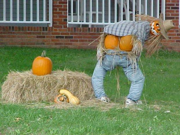 More fun with Pumpkins